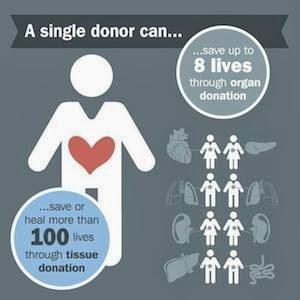 organ donation myths facts hope as i live breathe